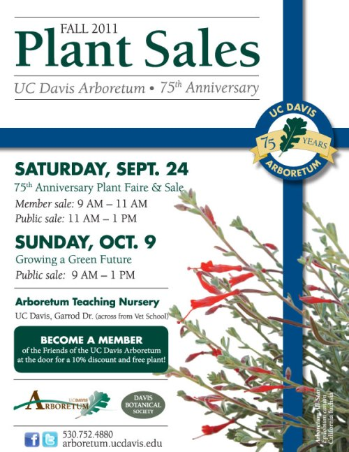 Image of Plant Sales Flyer